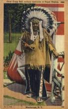 ind200046 - Chief Crazy Bull at Sugar Maples Archery Instructor, Indian Postcard Post Cards