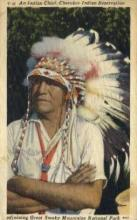 ind200047 - Cherokee Indian Postcard Post Cards