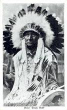 ind200098 - Chief Eagle Staff Indian Postcard Post Cards