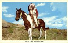 ind200130 - Chief on Pinto Pony Indian Postcard Post Cards