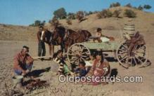 ind200378 - Navajo Family  Indian Postcard, Post Card