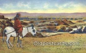 ind200432 - Hopi Indian & Burro Indian Postcard, Post Card
