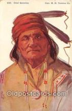 ind200574 - Chief Geronimo Artist L Peterson Copr HH Tammen Co Postcard Post Cards