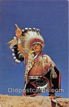 ind200600 - Blue Sky Eagle, Navajo Tribe Color New Mexico Tourist Bureau Postcard Post Cards