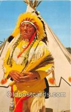 ind200625 - Dignity & Poise of a Chief  Postcard Post Cards