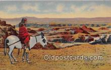 ind200696 - Hopi Indian & Burro Painted Desert Postcard Post Cards