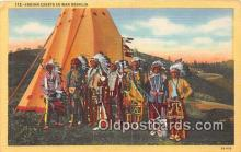 ind200811 - Indian Chiefs in War Regalia  Postcard Post Cards
