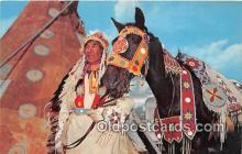 Indian Chieftain & Horse in Full Dress