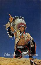 ind300055 - Blud Sky Eagle Navajo Tribe Postcard Post Cards