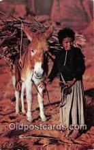 Navajo Lass & Her Burro