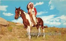 ind300235 - Indian Chief Color by Fulton Postcard Post Cards