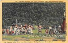 ind300243 - Cherokee Indian Reservation Great Smoky Mountains National Park, USA Postcard Post Cards