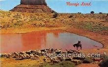ind300255 - Navajo Sheep Herd Arizona Utah Border, USA Postcard Post Cards