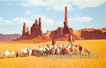 Navajo Women Taking Their Sheep