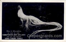 jpn001137 - Yamatoya's Art Gallery, Miyanoshita, Japan Japanese Postcard Postcards
