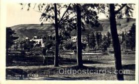 jud001436 - Tiberias, Town Garden Judaic, Judaica Postcard Postcards