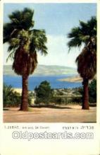 jud001468 - Tiberias, The Lake of Galilee Judaic, Judaica Postcard Postcards