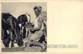 jud001581 - A Kvutzah Idyll Judaic, Judaica Postcard Postcards