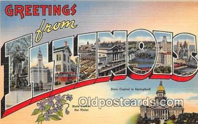 LLS100012 - Illinois, USA Postcard Post Cards