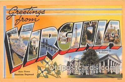 LLS100022 - Virginia, USA Postcard Post Cards