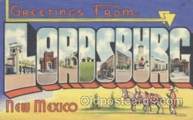 Lordsburg, New Mexico, USA