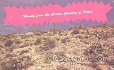 LLT001129 - Texas Large Letter Town Postcard Postcards