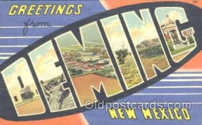 LLT001135 - Deming, New Mexico, USA Large Letter Town Postcard Postcards