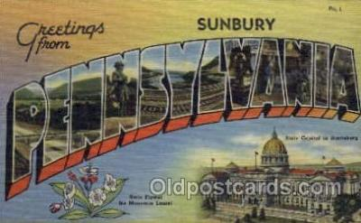 LLT001282 - Sunbury, Pennsylvania Large Letter Town Towns Post Cards Postcards