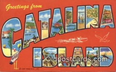 LLT200222 - Catalina Island, CA, USA Large Letter Town Postcard Post Card Old Vintage Antique