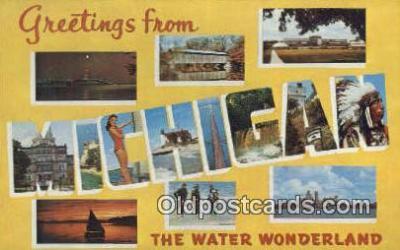 LLT200249 - Michigan, USA Large Letter Town Postcard Post Card Old Vintage Antique