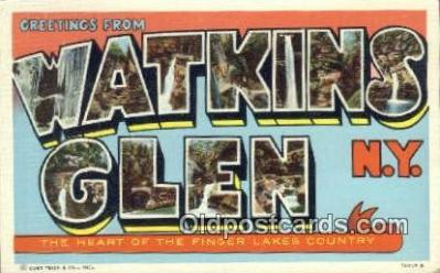 Watkins Glen, NY, USA Postcard Post Card