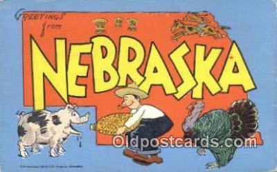 Nebraska, USA Postcard Post Card