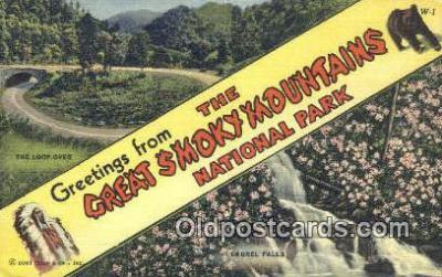 LLT201676 - Great Smoky Mountains National Park USA Large Letter Town Vintage Postcard Old Post Card Antique Postales, Cartes, Kartpostal