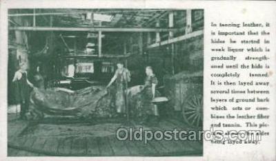 lea001002 - Hermann Oak St.Louis, tanning leather Leather Harness Postcard Postcards