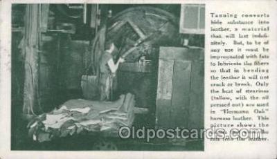 lea001003 - Hermann Oak St.Louis, tanning leather Leather Harness Postcard Postcards