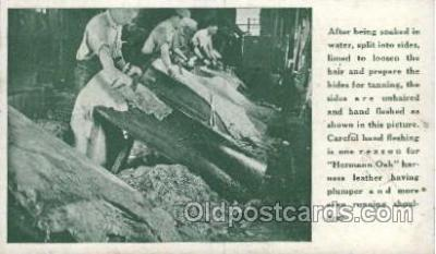 lea001005 - Hermann Oak St.Louis, tanning leather Leather Harness Postcard Postcards