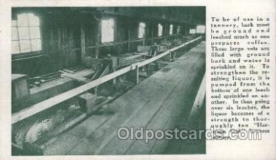 lea001006 - Hermann Oak St.Louis, tanning leather Leather Harness Postcard Postcards