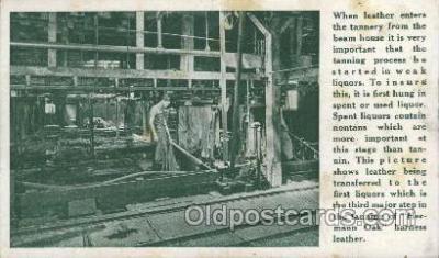 lea001009 - Hermann Oak St.Louis, tanning leather Leather Harness Postcard Postcards