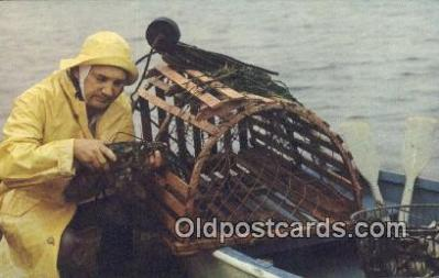 Maine Coast Fisherman