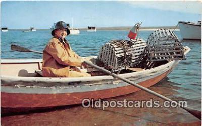 lob001060 - Lobsterman Fisherman Cape Cod, Massachusetts Postcard Post Card