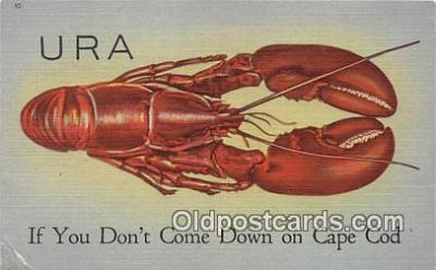 URA, If You Dont Come Down on Cape Cod