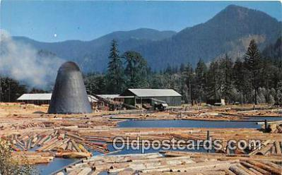 Northwest Sawmill & Log Pond