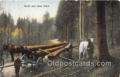 Grub aus Dem Harz