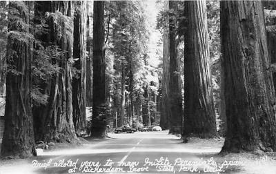 log001187 - Logs, Logging, Timber, Old Vintage Antique Postcard Post Card, Postales, Postkaarten, Kartpostal, Cartes, Postkarte, Ansichtskarte