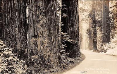 log001188 - Logs, Logging, Timber, Old Vintage Antique Postcard Post Card, Postales, Postkaarten, Kartpostal, Cartes, Postkarte, Ansichtskarte