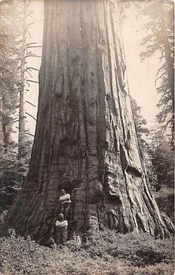 log001223 - Logs, Logging, Timber, Old Vintage Antique Postcard Post Card, Postales, Postkaarten, Kartpostal, Cartes, Postkarte, Ansichtskarte