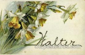 LLN001025 - Walter Large Letter Name, Names, Postcard Postcards
