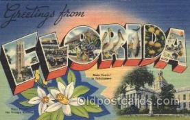 LLS001321 - Florida, USA Large Letter State States Postcard Postcards