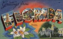 LLS001555 - Florida Large Letter State States Post Cards Postcards