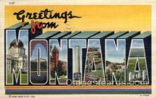 LLS001584 - Montana Large Letter State States Post Cards Postcards